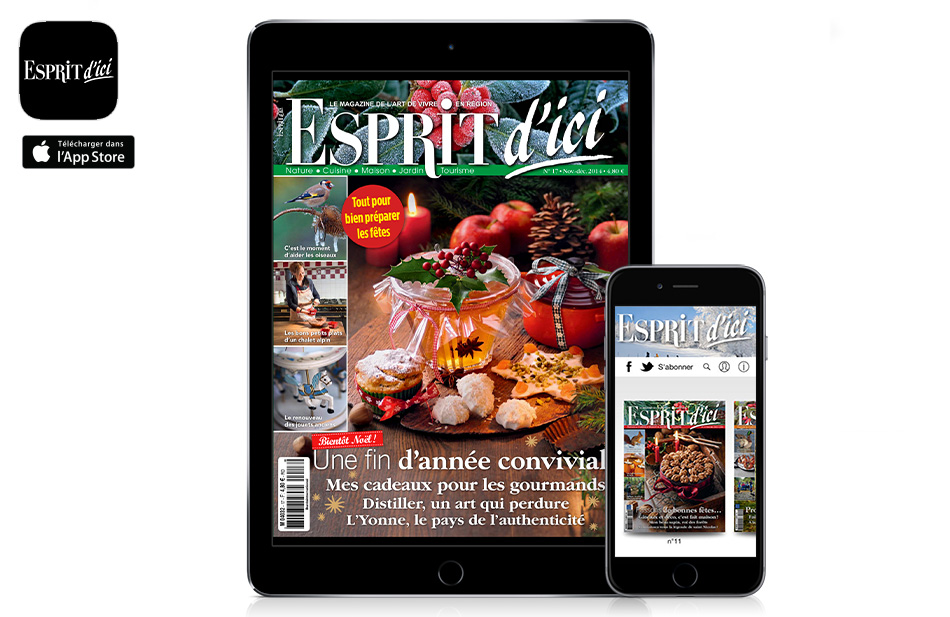 application-kiosque-magazine-Esprit-dici-sur-ipad-iphone