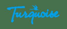 Turquoise Magazine - Client Flippad